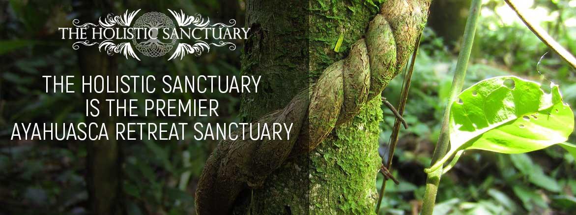 The Holistic Sanctuary is the premier Ayahuasca Retreat Sanctuay
