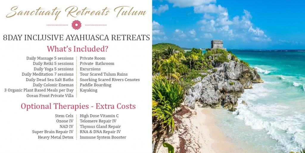 Most Exclusive Retreats in The World The Holistic Sanctuary Retreats Tulum