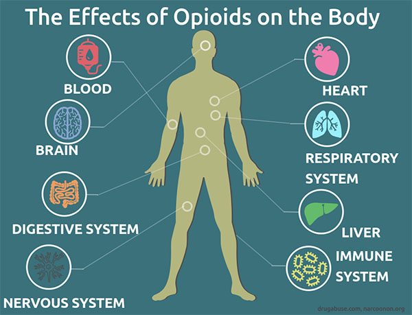 The effect of opioid use