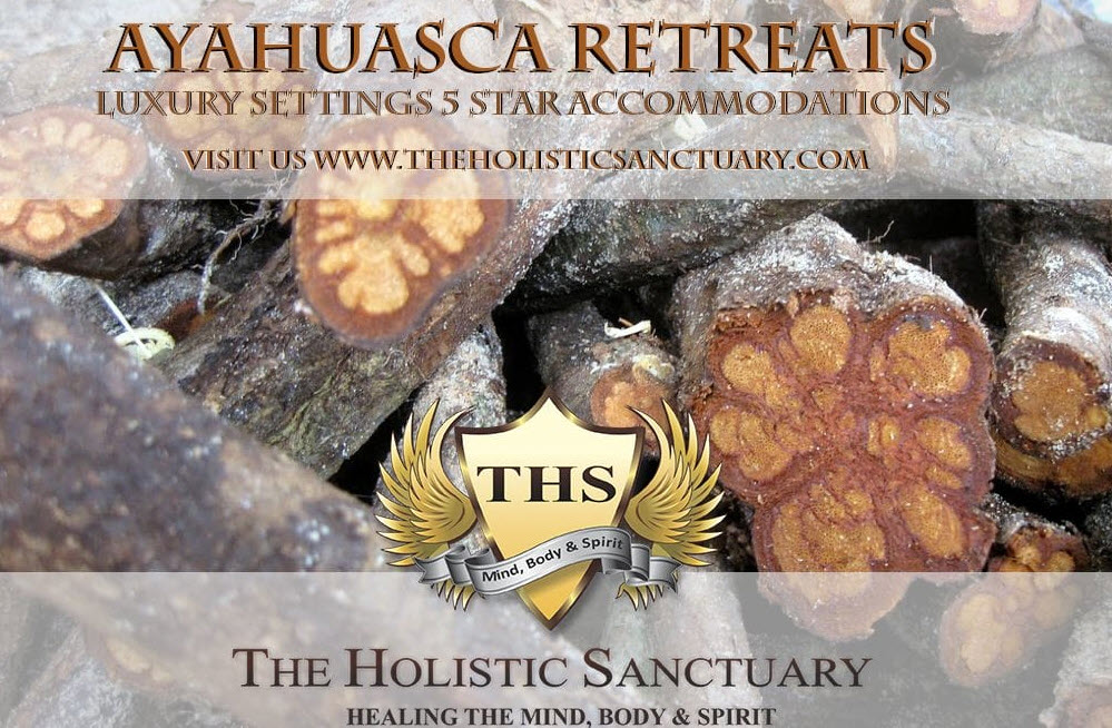 holistic sanctuary healing the spirit ayahuasca retreats