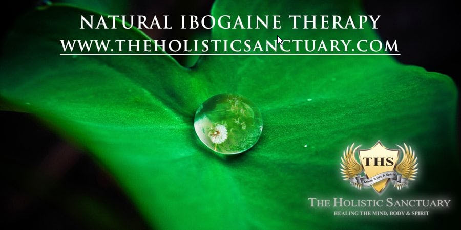 natural ibogaine therapy