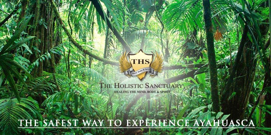 safest way to experience ayahuasca