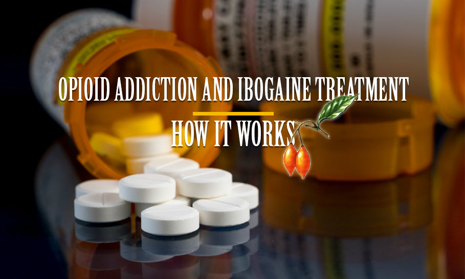 Opioid Addiction and Ibogaine Treatment